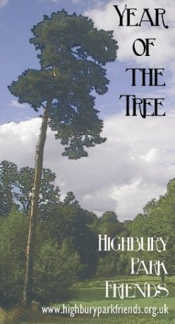 Highbury Park - Year of the Tree Scots Pine